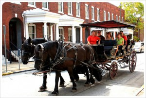 Carriage Tours in Savannah