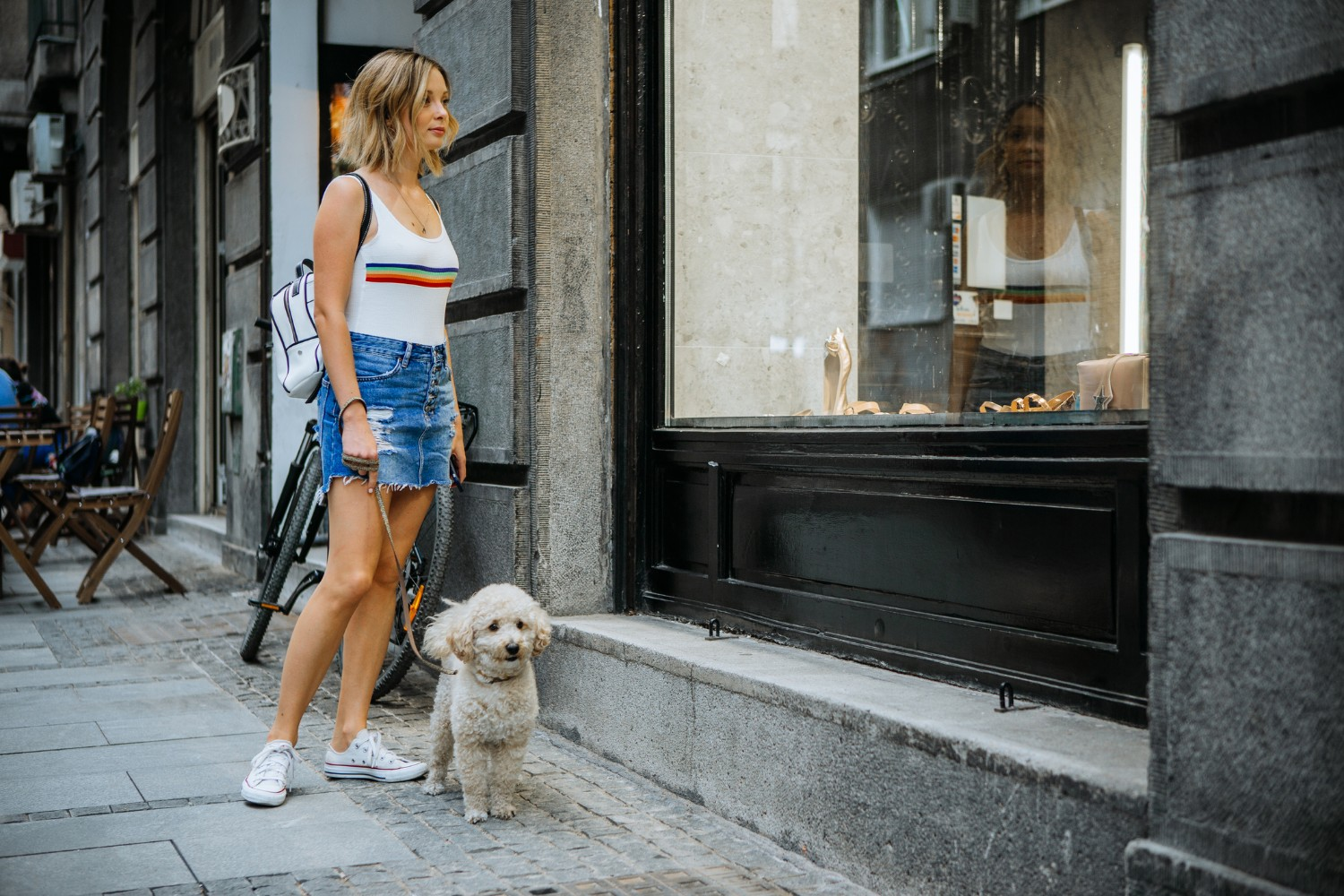 shopping with dog