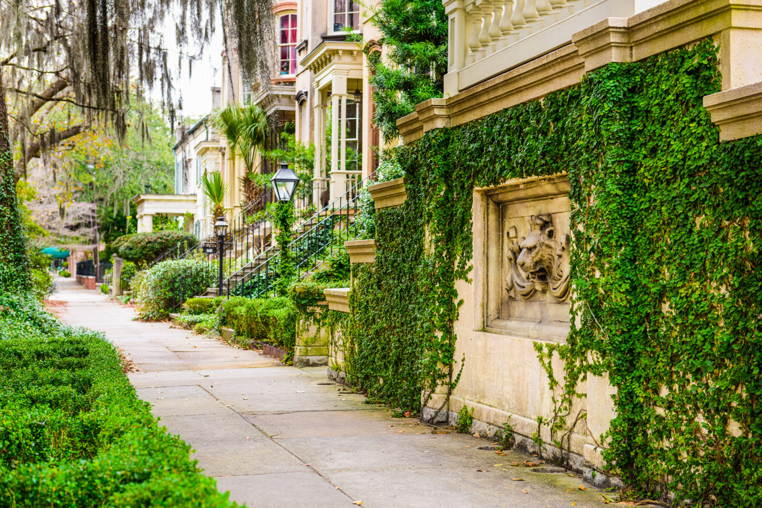 4 Things To Do In The Savannah Historic District