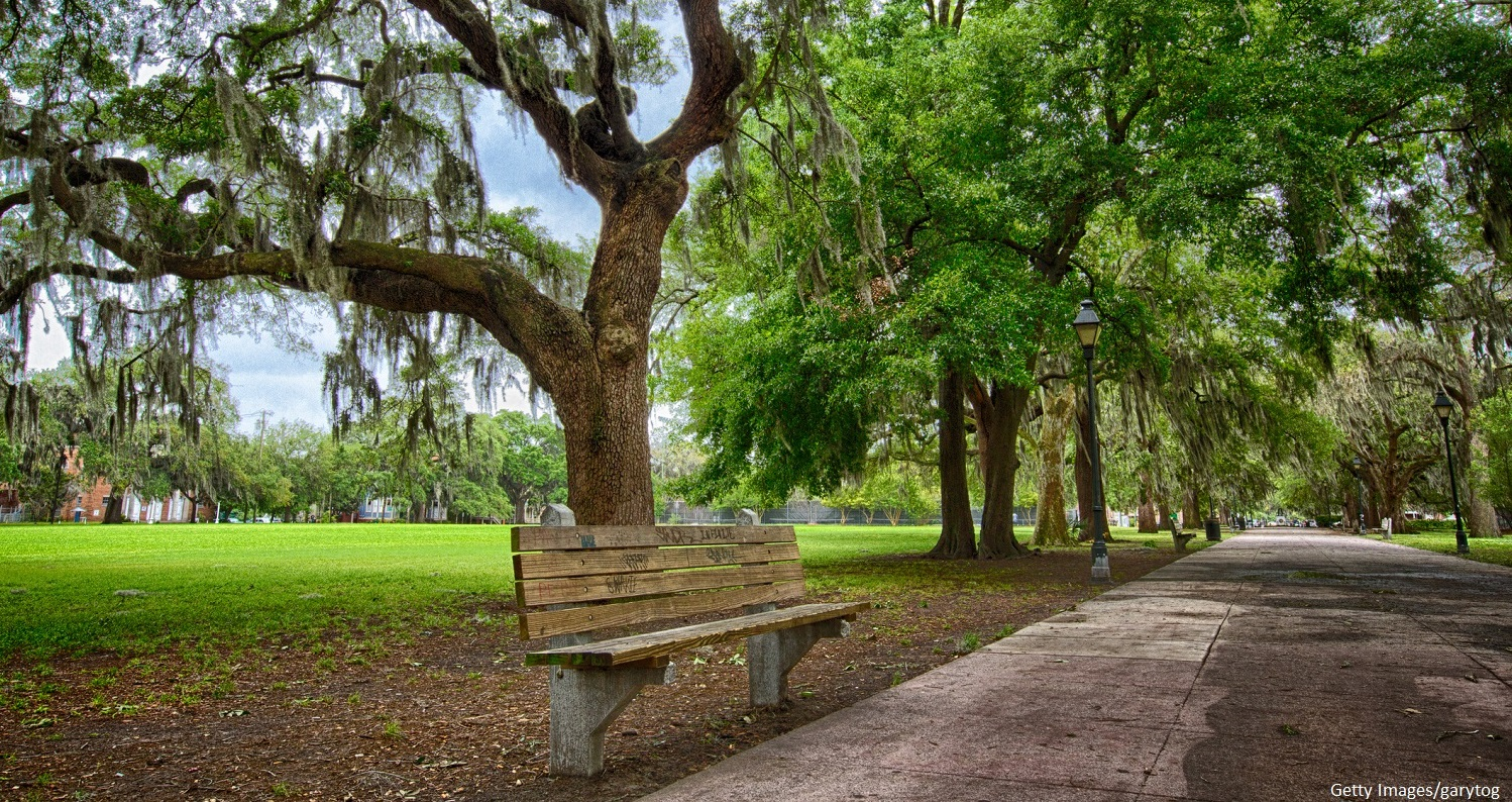 See the Forrest Gump Bench in Savannah, GA.