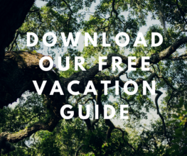 trees in the background- download our free vacation guide (3)