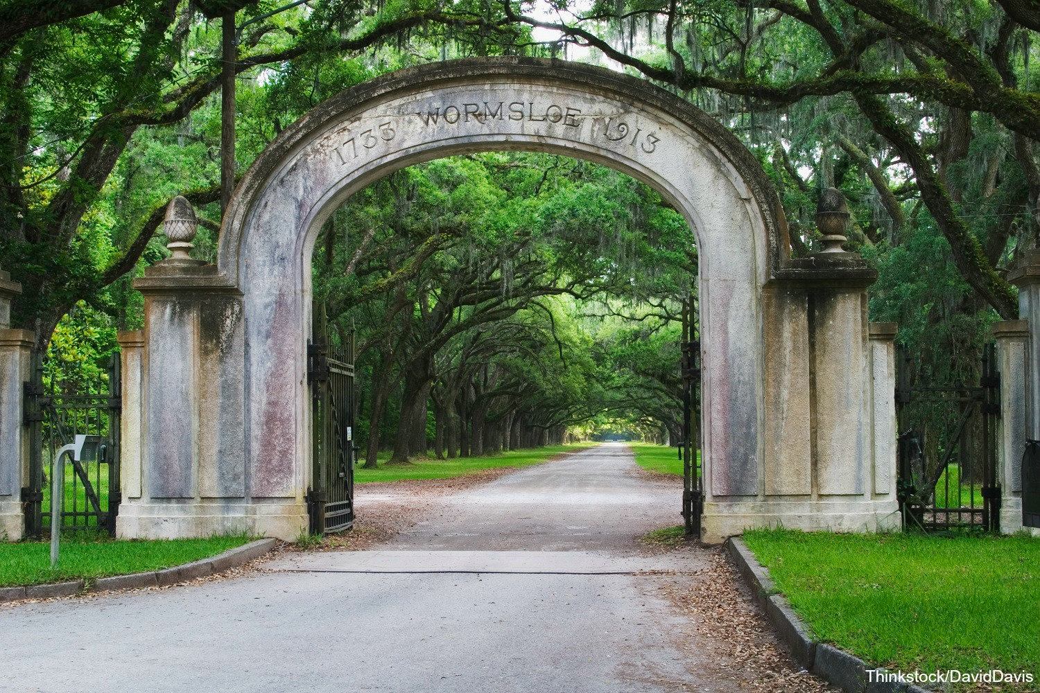 Are There Any Plantation Tours in Savannah, GA? What You Need to Know